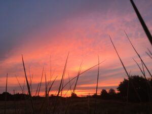 Dia de los Muertos - Abschied und Neubeginn @ Reiki in Schönow